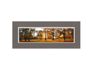 Glasbild Beautiful Autumn 125x50cm n-7536 von Eurographics