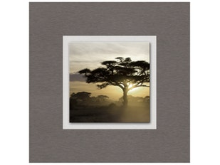 Glasbild Evening Shadows 50x50cm n-7592 von Eurographics